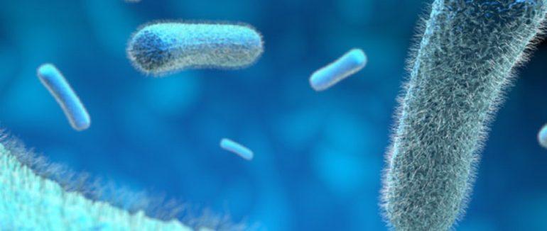 Sérologie střevních infekcí a reaktivní artritida